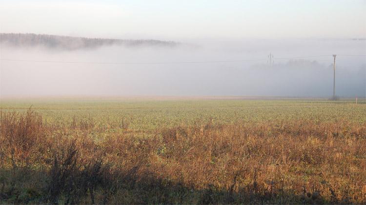 Podzimní rána v mlžném oparu