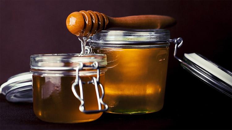 Med – dávné sladidlo od včel